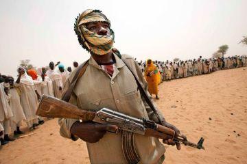 Член повстанческого движения Национальная Армия освобождения Судана Image by: HANDOUT / REUTERS